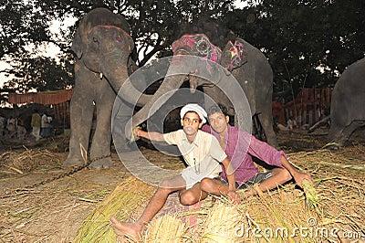 Boys and elephants Editorial Photo