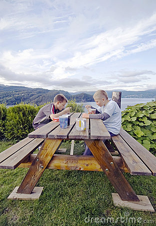 Boys having picnic meal
