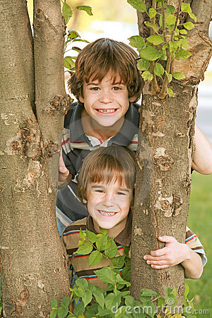 Free Boys In A Tree Royalty Free Stock Image - 4142506