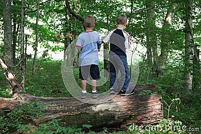Boys on a Log