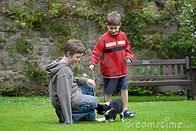 Boys playing with a cat