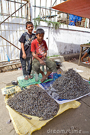 Boys selling fish Editorial Image