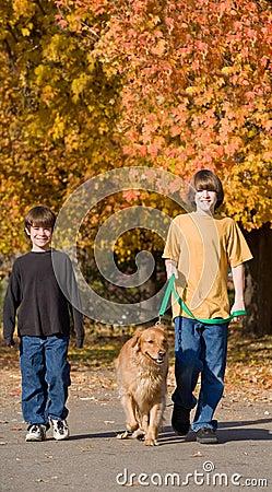 Free Boys Walking The Dog Royalty Free Stock Images - 7017729