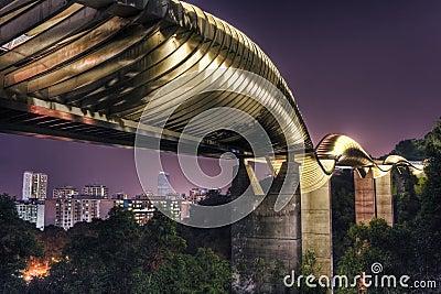 Brücke in Singapur: Henderson Wellen