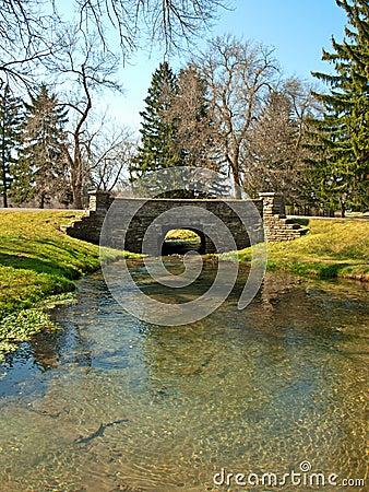 Brücke und Teich