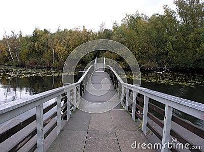 Brücke zur Sumpf-Insel
