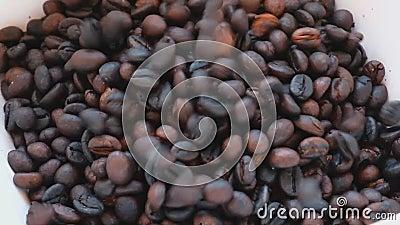 Brązowa arabska fasolka z kawy wpadająca do białej miski zbiory wideo