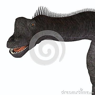 Free Brachiosaurus Animal Head Royalty Free Stock Photos - 75646218