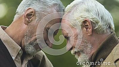 Bracia opiera głowy wpólnie, szczęśliwy widzieć each inny, czekający spotkanie zbiory wideo