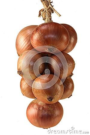 Free Braid Of Onions Royalty Free Stock Image - 1682576