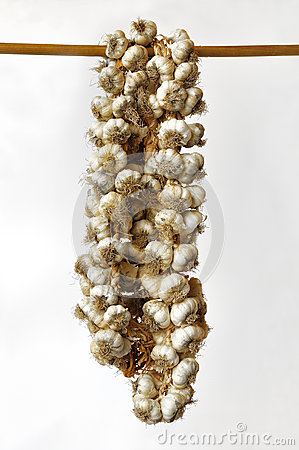 Braids of garlic hanging on a wooden pole