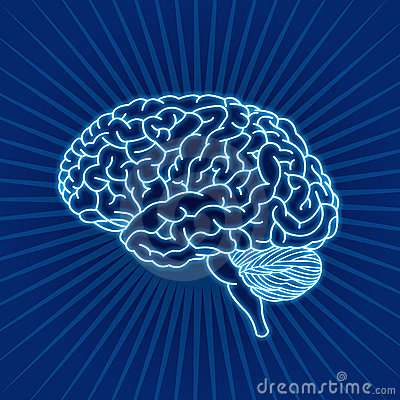 Free Brain Royalty Free Stock Photos - 10487708