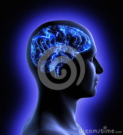 Free Brain Activity Royalty Free Stock Image - 26137816