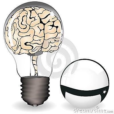 Brain in a bulb