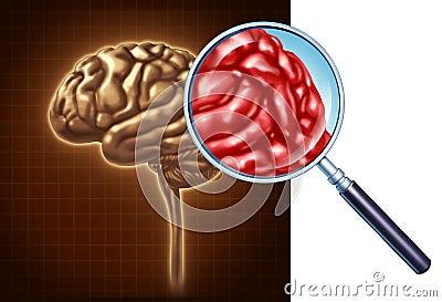 Brain Close Up