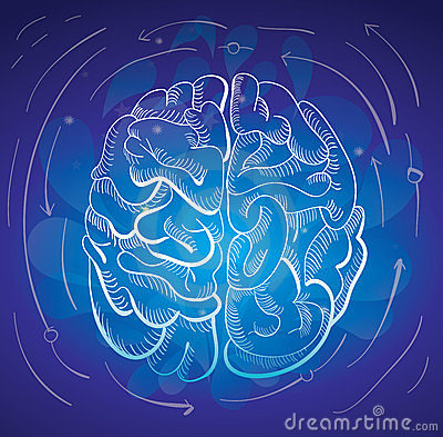 Brain and creativity