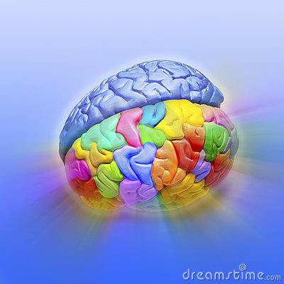 Brain Creativity Psychology