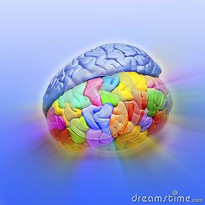 Brain Creativity Psychology Mind