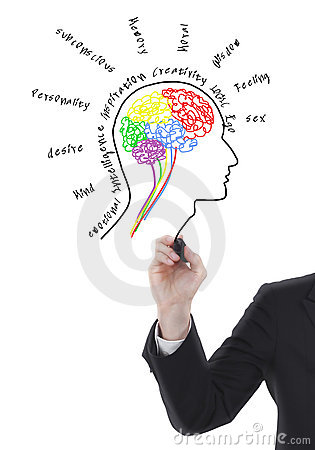 Brain drawing with wording