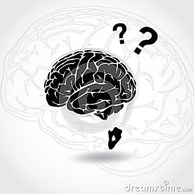 Brain Q