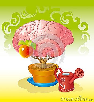Brain a tree