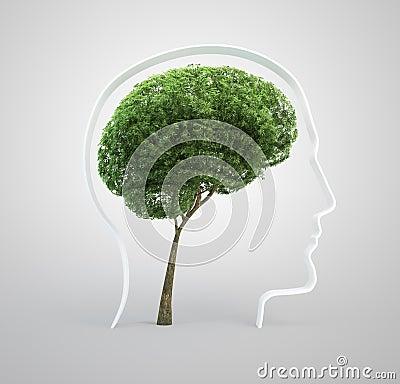 Brain tree - human head