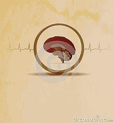 Brains concept