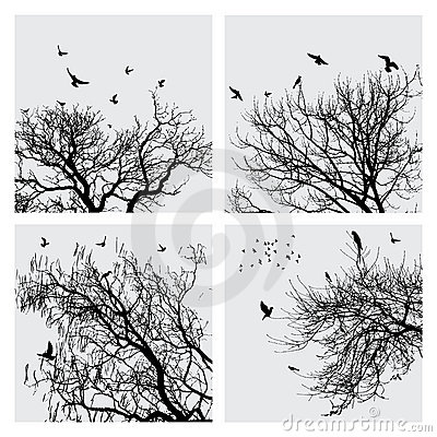 Branch and birds