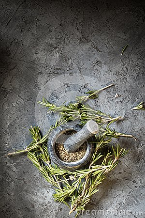 Free Branch Bunch Fresh Rosemary Spices Stock Photos - 111569523