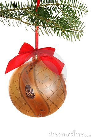 Branch with hanging gold bauble