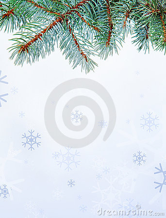 Branch and snowflakes