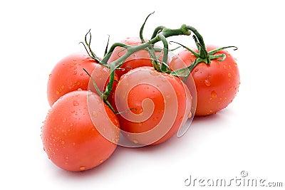 Branch tomato