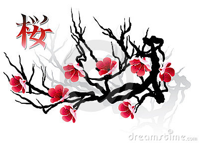 Branchement et calligraphie de sakura photo stock image 3375000 - Dessin arbre chinois ...