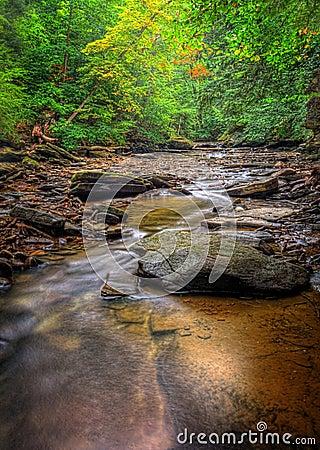 Free Brandywine Creek Falls Stock Photo - 58815490