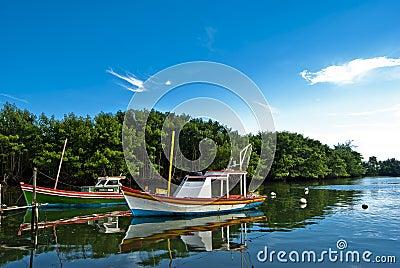 Brazilian boats