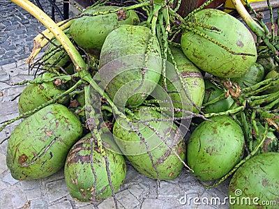 Brazilian coconuts agua de coco