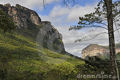 Brazilian Park