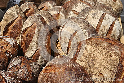 Country style loaves of white and whole wheat bread.