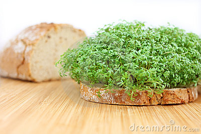 Bread with cress