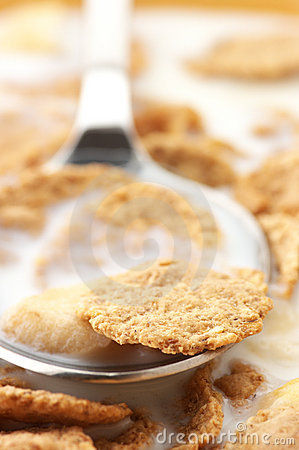 Free Breakfast Cereal With Milk Close-up Stock Images - 14914464