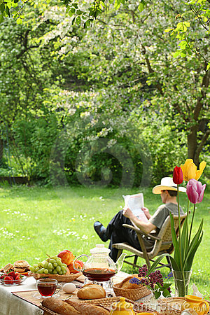 Free Breakfast In The Garden. Royalty Free Stock Images - 14139739