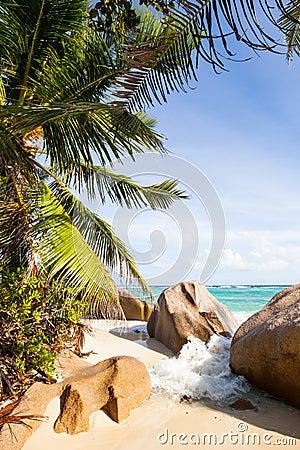 Breakwater at tropical beach