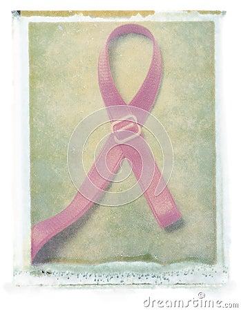 Breast Cancer Ribbon (bra strap)