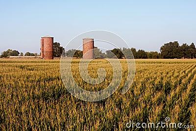 Brick silos