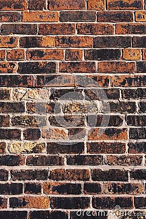 Free Brick Wall Royalty Free Stock Images - 404989