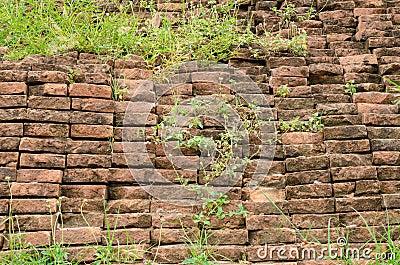 Brick wall with grass stock photo image 45446717 for Como quitar la mala hierba del jardin