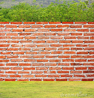 Free Brick Wall On Grass And Trees Royalty Free Stock Photography - 24203557