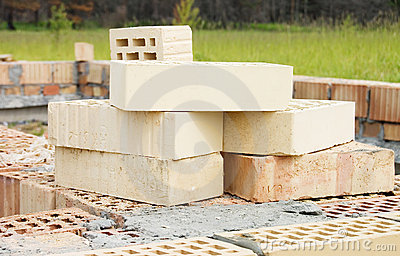 Bricks for building