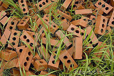 Bricks in grass