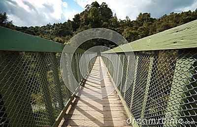 Bridżowy pieszy